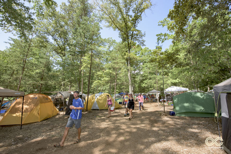 A Limited Number of Forest Camping Spots Have Been Released