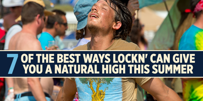 7 of the Best Ways LOCKN' Can Give You a Natural High This Summer